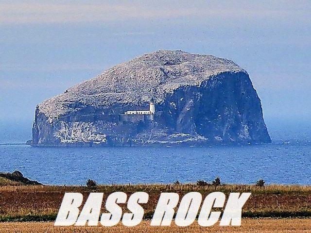 bass_rock_MOD