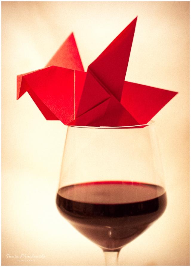 Wino i ptak-białe tło-2